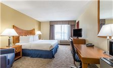 Wingate by Wyndham Universal Studios & Convention Center Room - ADA King